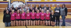 Ladysmith Volleyball